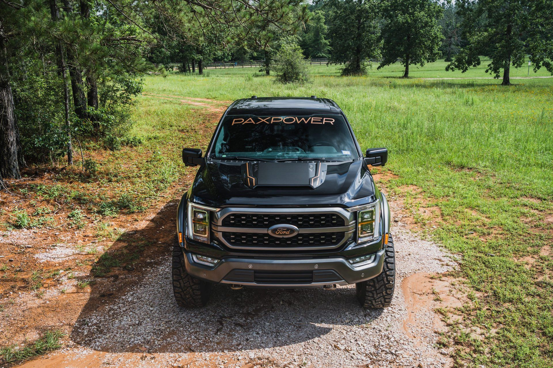 Ford_F-150_by_PaxPower-0010