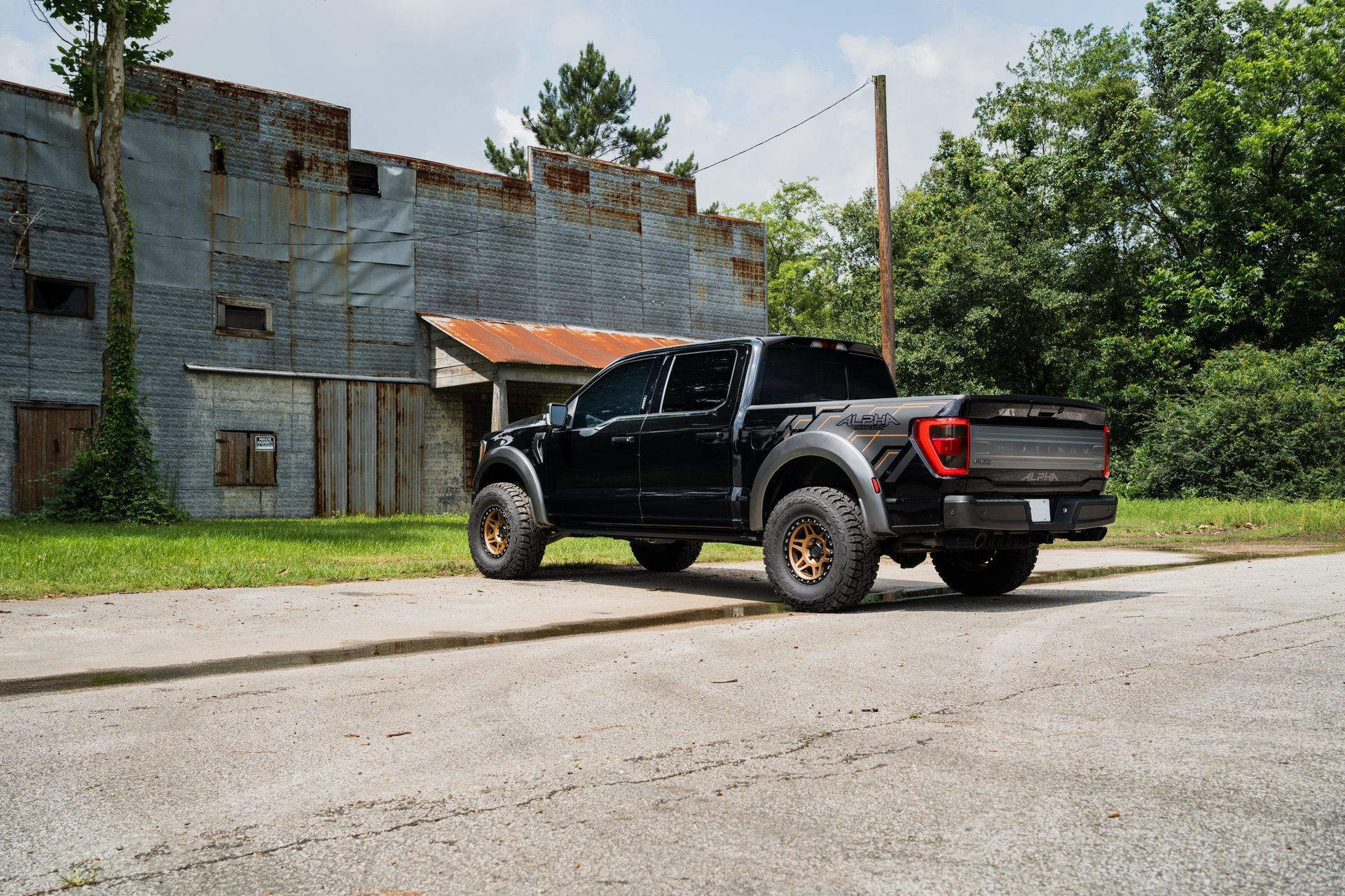 Ford_F-150_by_PaxPower-0017