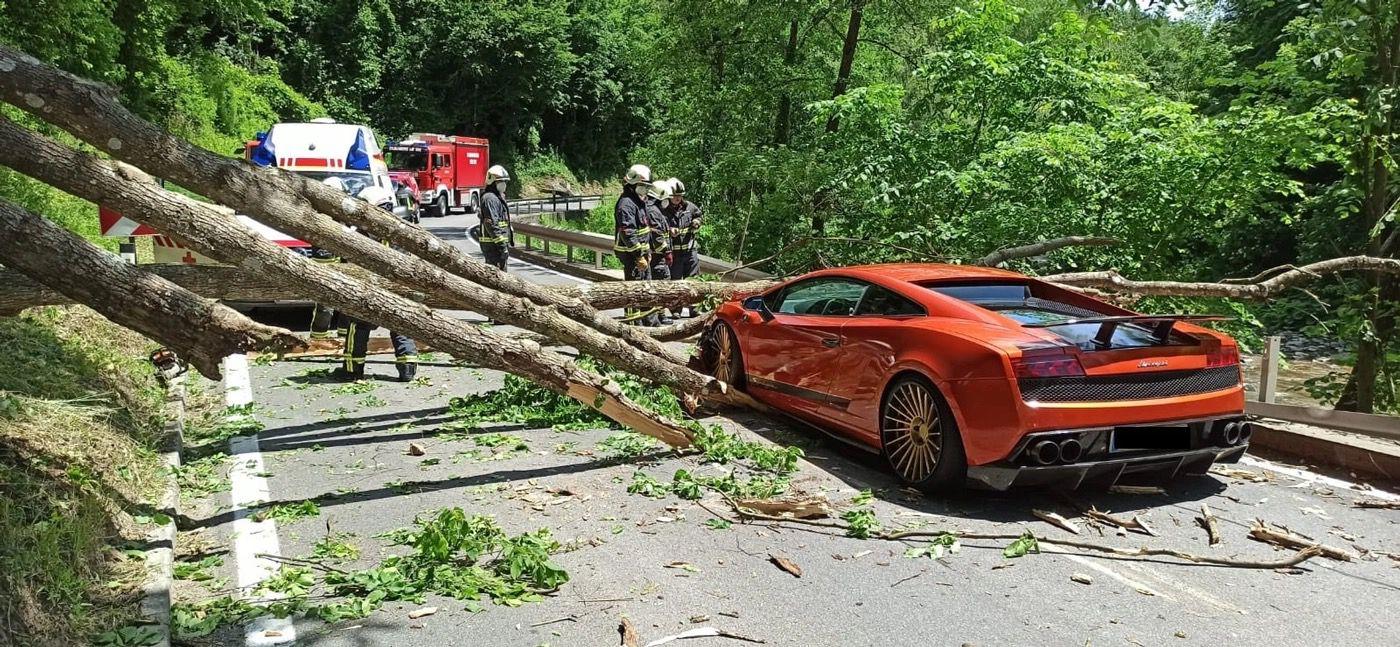 Lamborghini_Gallardo_tree-0002