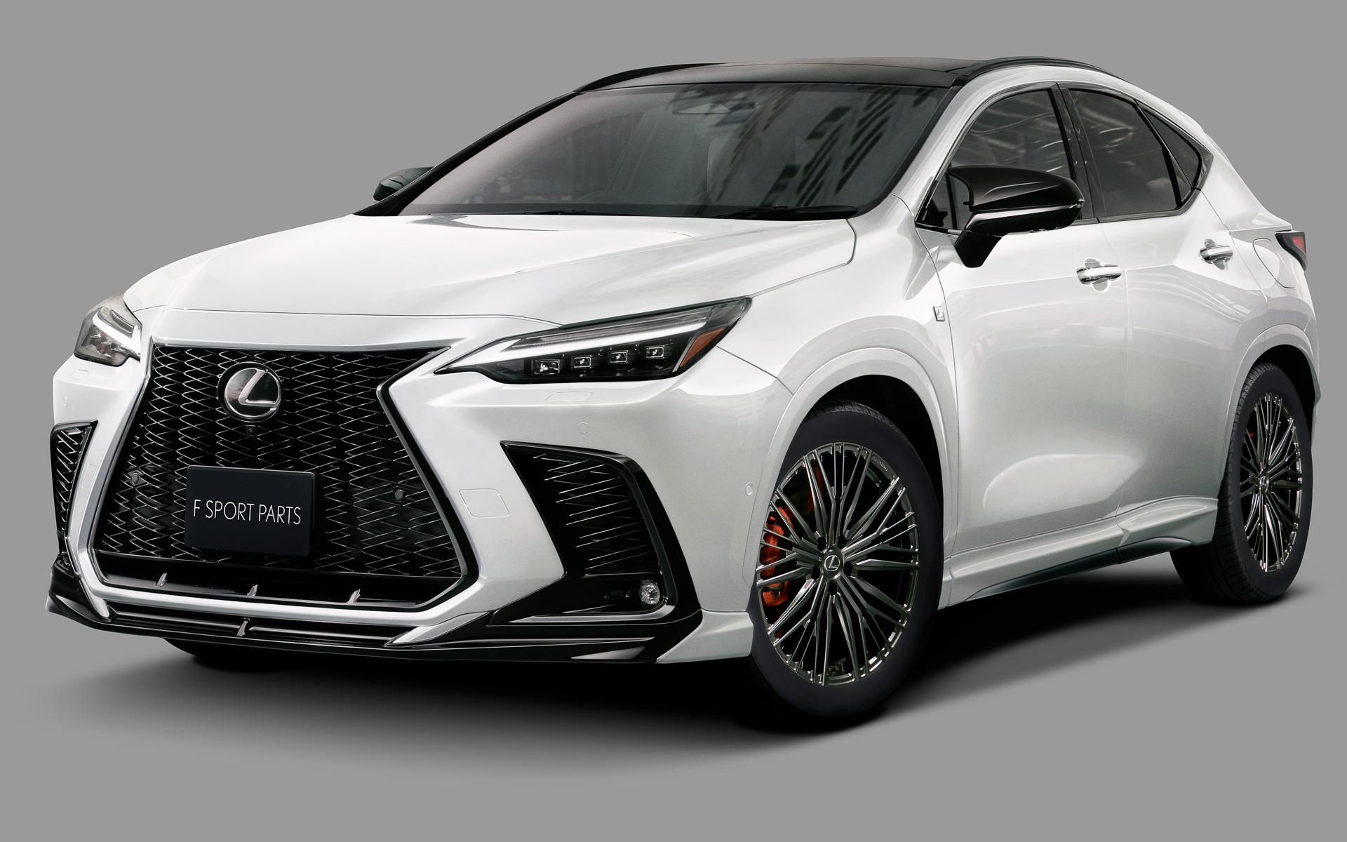 Lexus-NX-TRD-parts-1