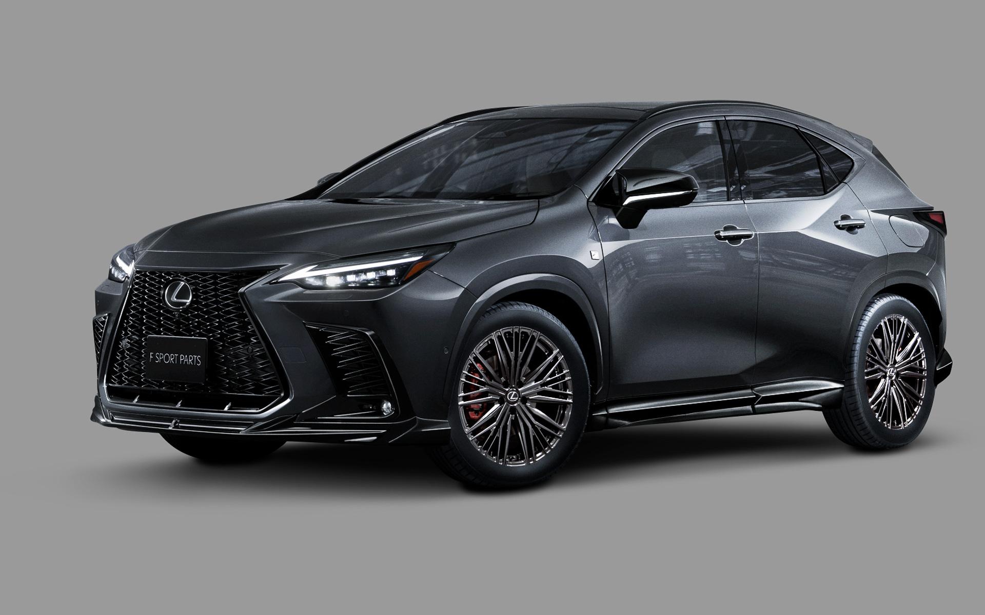 Lexus-NX-TRD-parts-11