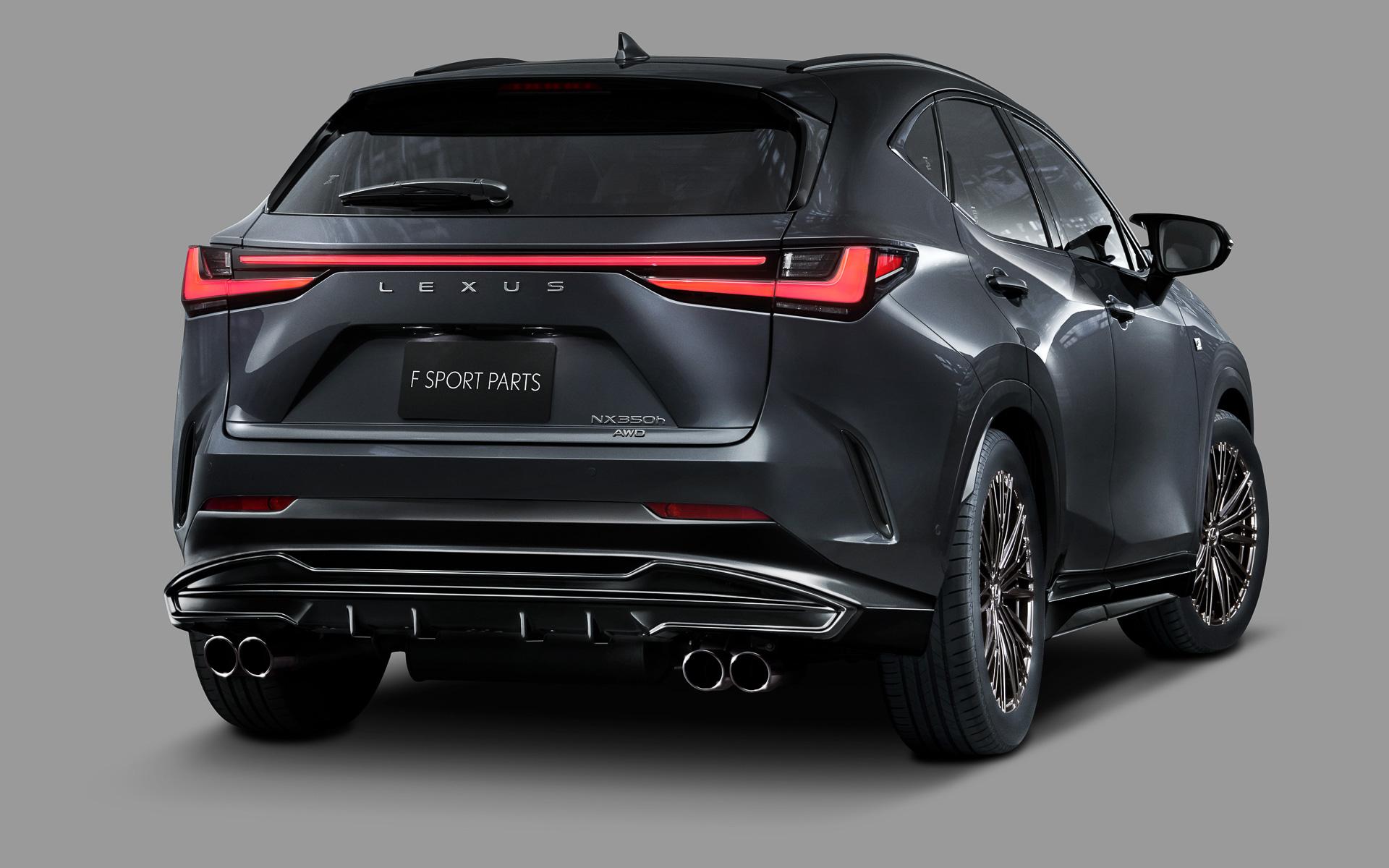 Lexus-NX-TRD-parts-12