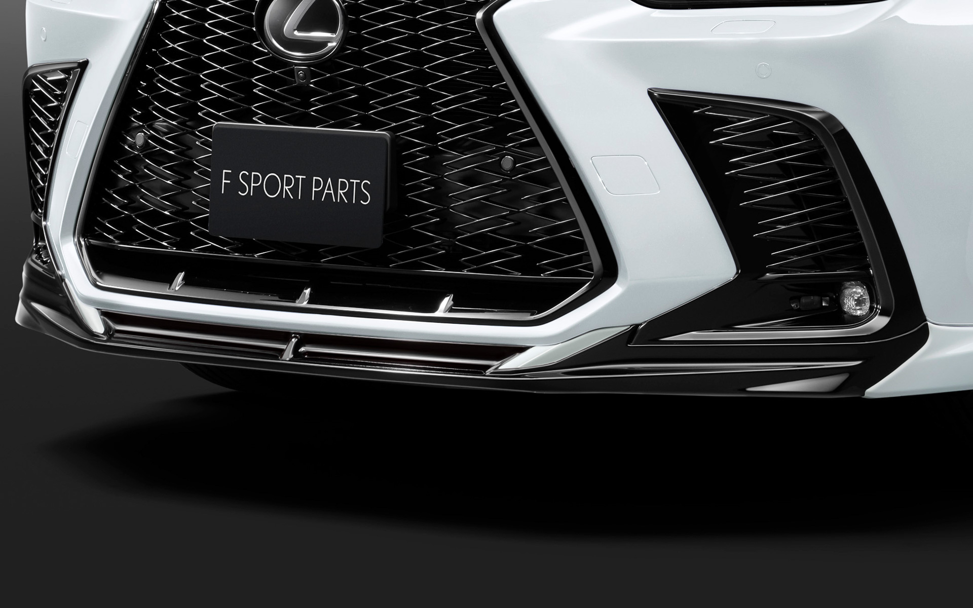 Lexus-NX-TRD-parts-3