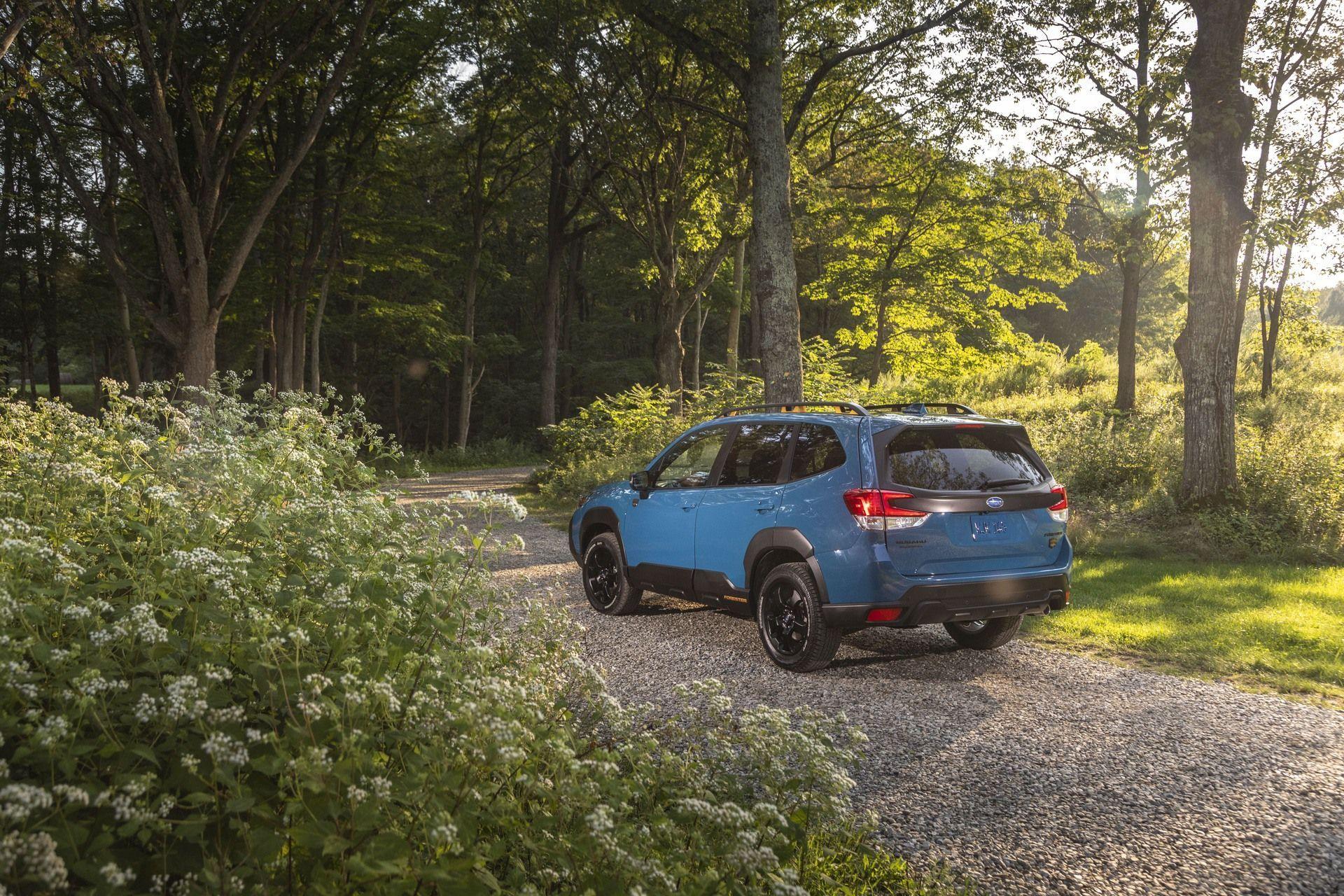 Subaru_Forester_Wilderness-0002