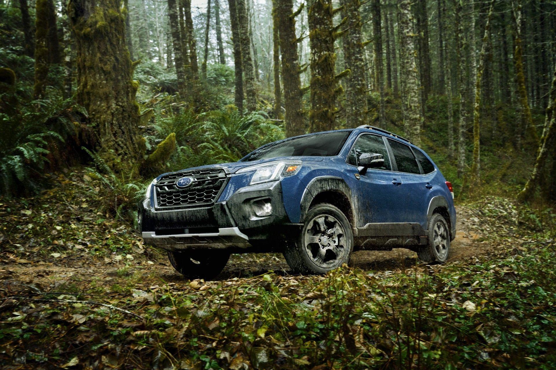 Subaru_Forester_Wilderness-0011