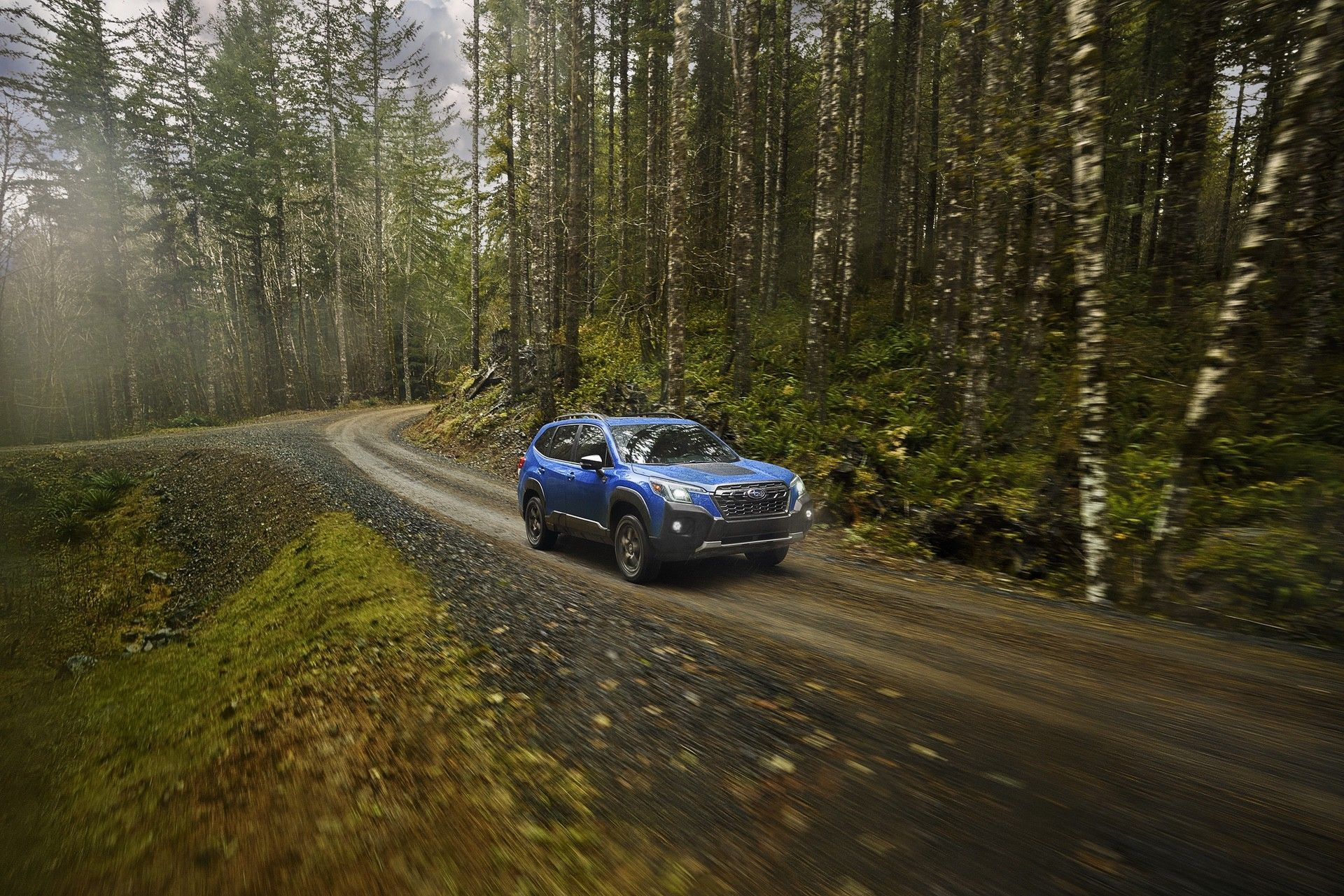 Subaru_Forester_Wilderness-0018