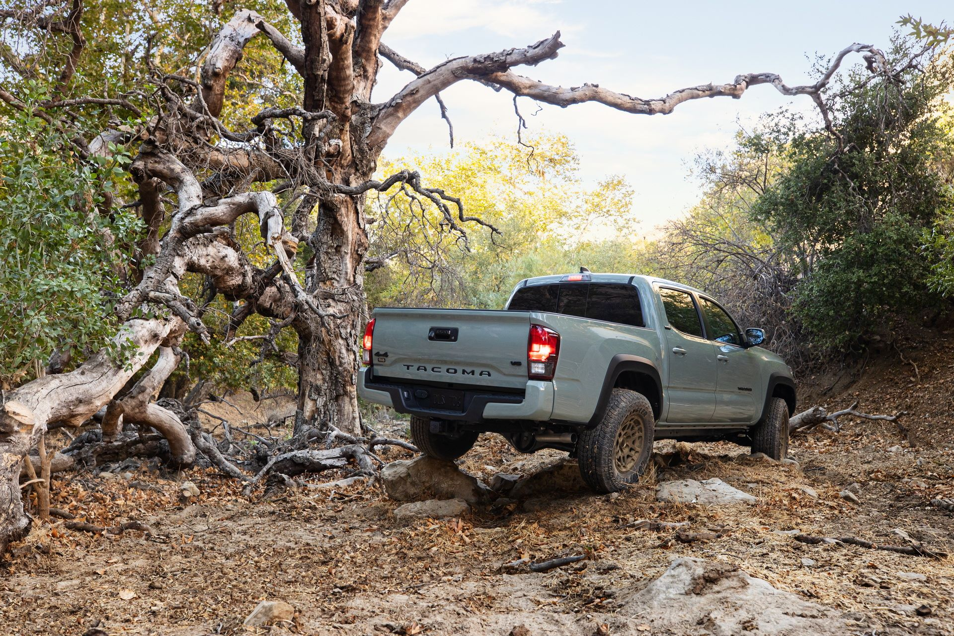 Toyota-Tacoma-TRD-Pro-and-Tacoma-Trail-Edition-6