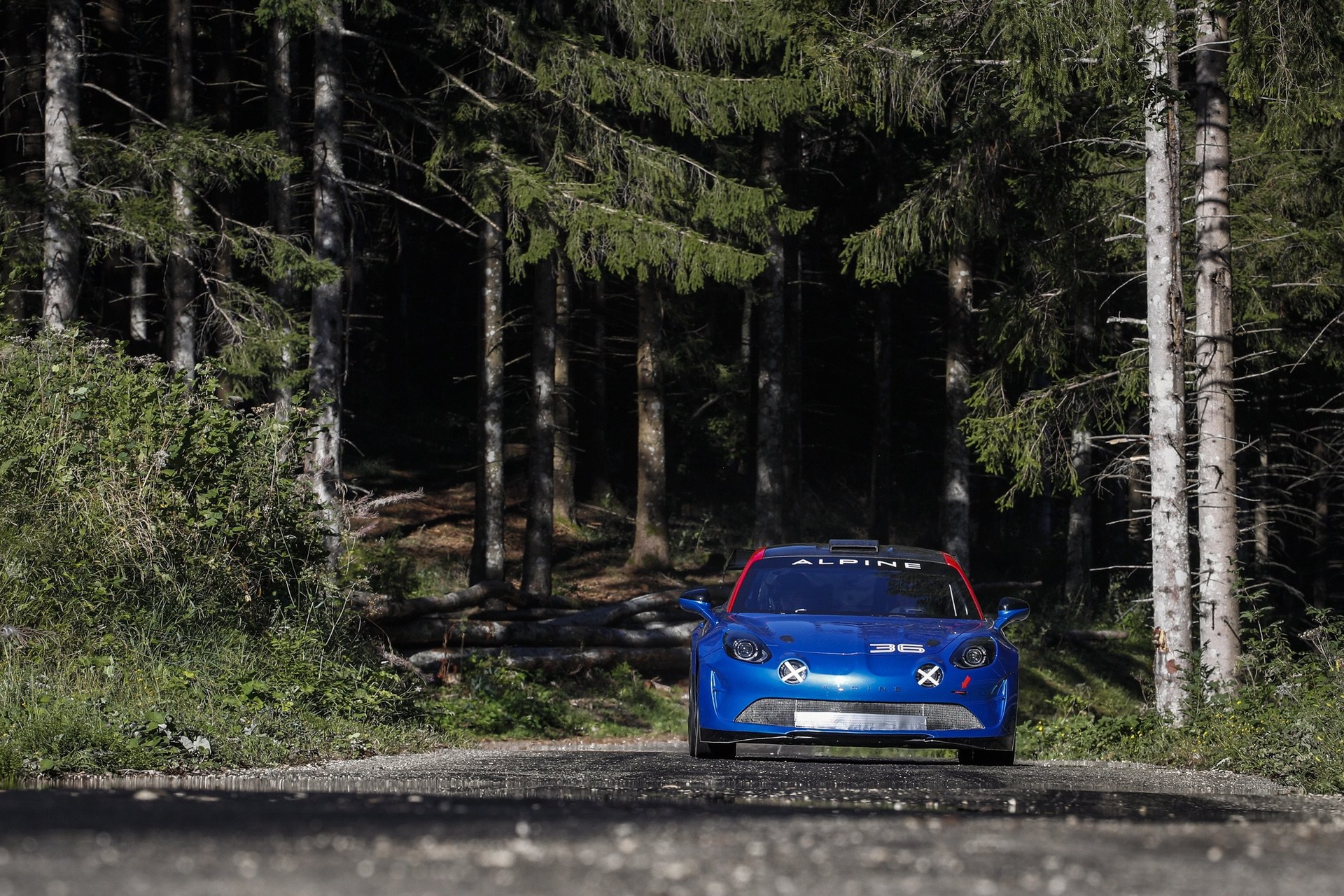 2019 - ALPINE A110 RALLY