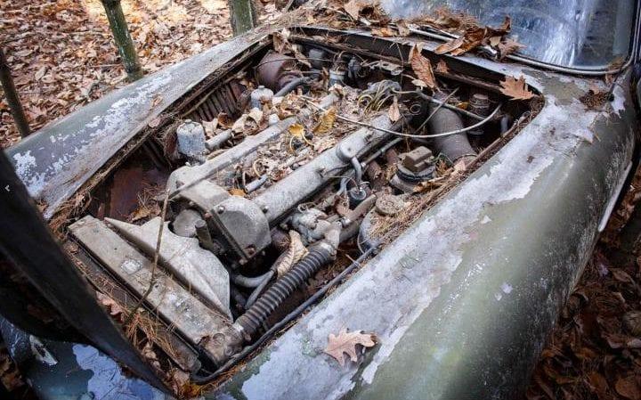Aston-Martin-DB4-forest-found3