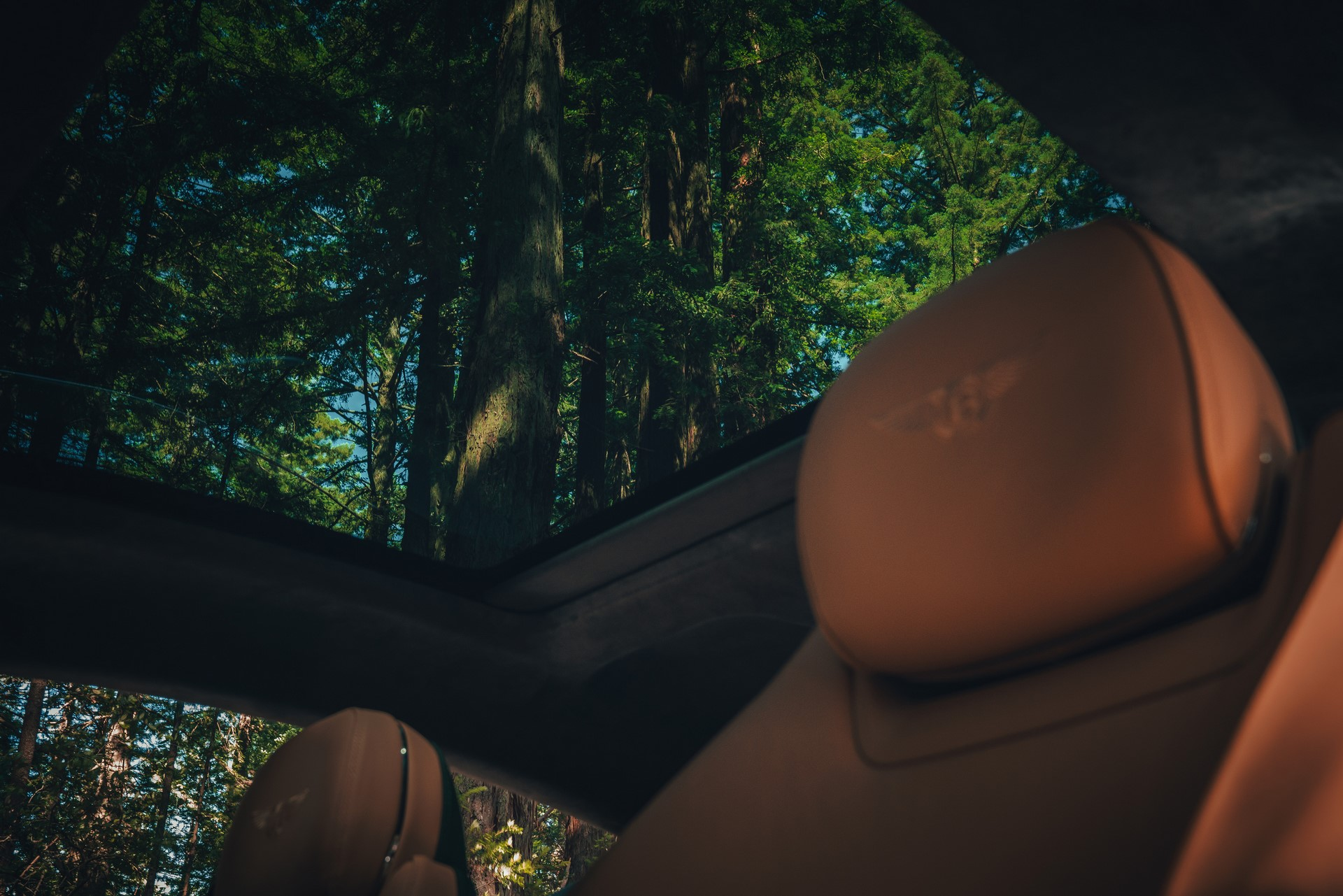 Bentley-Continental-GT-2020-5