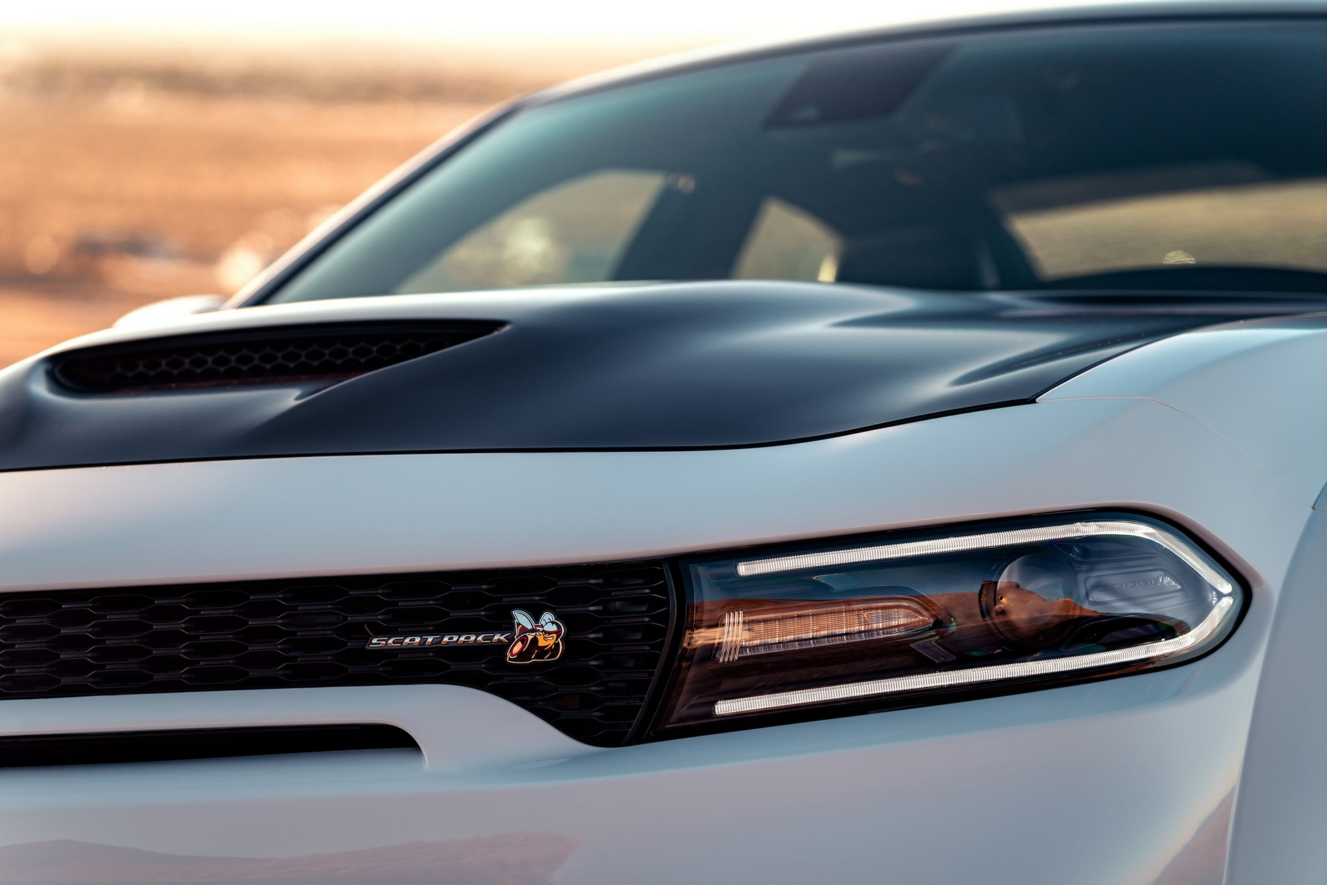 2020 Dodge Charger Scat Pack Widebody features the Scat Pack Bee badge on the front grille