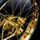 Gold Bicylce (4)