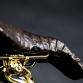 Gold Bicylce (6)