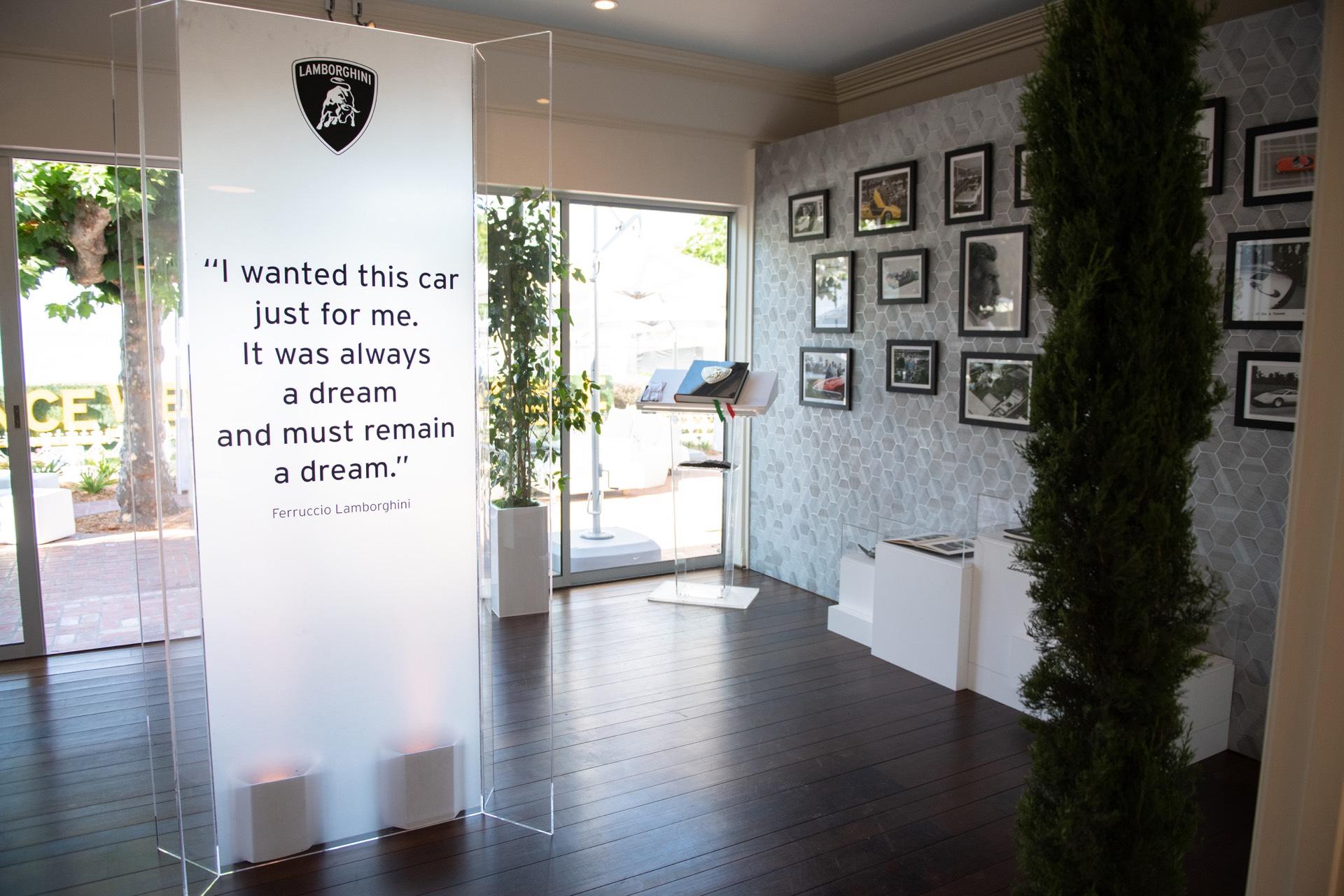 Skyler-Grey-Lamborghini-Aventador-S-Art-Car44