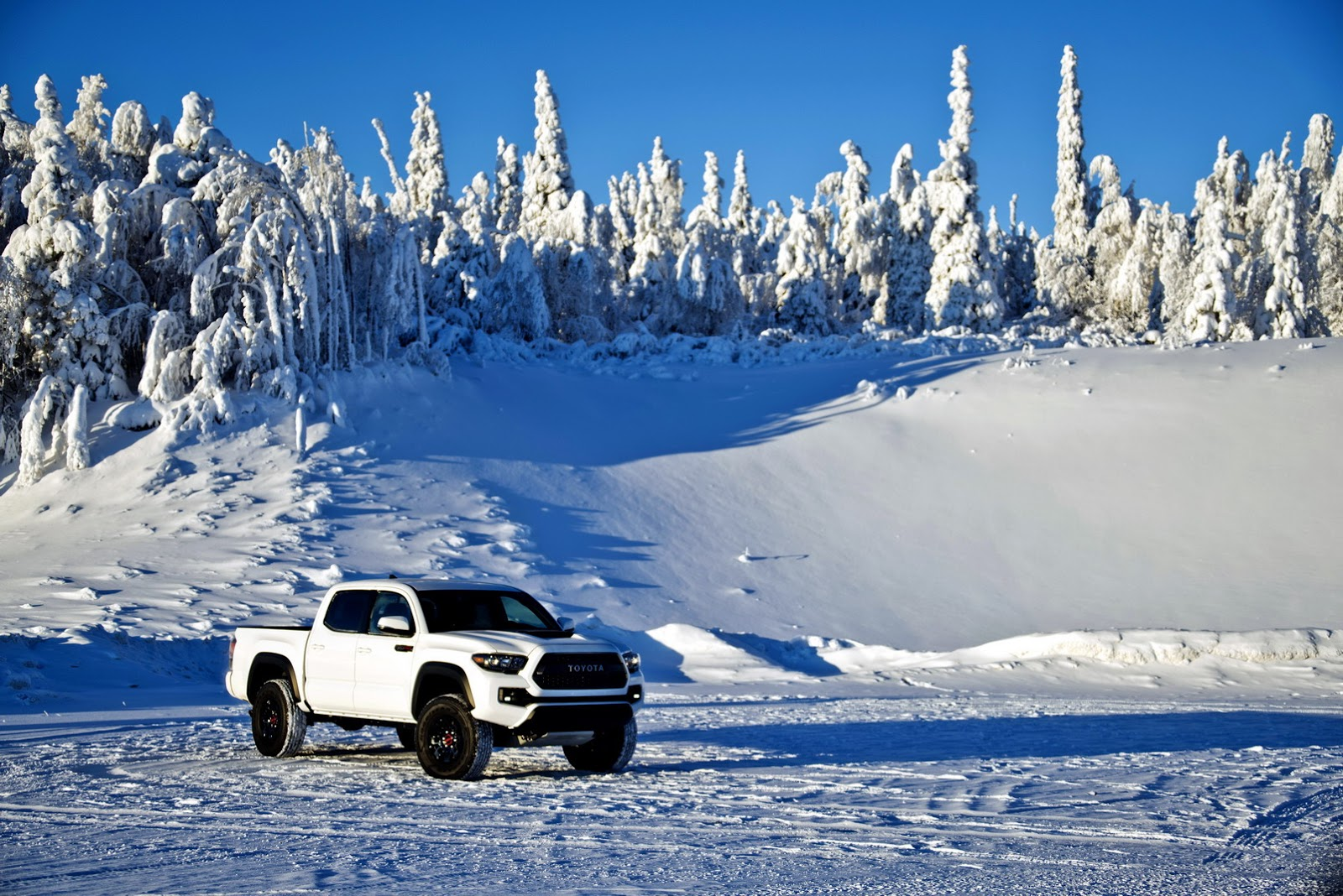 All Types  2016 Tacoma Trd Off Road  19s20s Car and Autos All