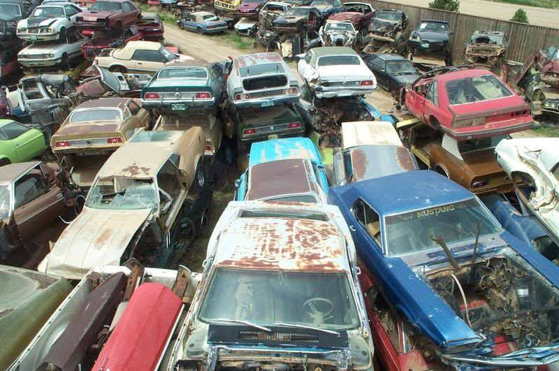 photos worlds largest ford mustang salvage yard 2017