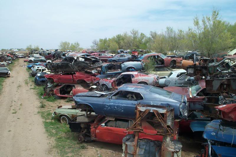 World Largest Ford Mustang Salvage Yard on Ford Mustang Salvage Yards Texas